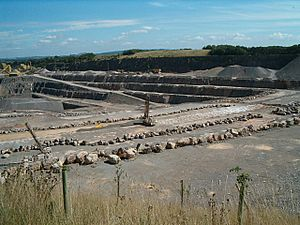 Quarries of the Mendip Hills - Western extension of Whatley Quarry.