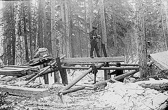 Whipsaw - Whipsawing for boatbuilding in Alaska, late 19th century