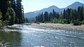 White River- Napeequa Crossing near Lake Wenatchee.jpg
