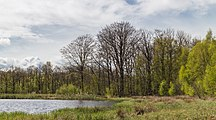Wijnjeterper Schar, Natura 2000-gebied provincie Friesland 13.jpg