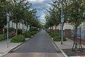 Wikipedia Wikivoyage Fototour Juni 2019, Senftenberg, Stefan Fussan - 0210.jpg