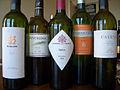 Wine Tasting- Malbec.jpg
