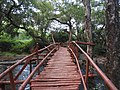 Wooden bridge-3-thalaiyanai-kalakad-tirunelveli-India.jpg