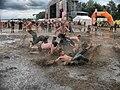 Woodstock festival mud.jpg