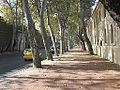 Woody Road at Beşiktaş.jpg