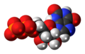 Xanthosine diphosphate anion spacefill.png