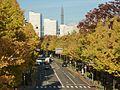 Yamashita Park 01.jpg