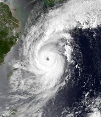平成5年台風第13号