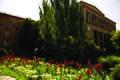Yerevan State University 39.JPG