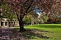 York, Minster Yard IMG 3103 - panoramio.jpg