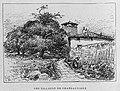 Yzeron - Tilleuls de Chateauvieux.jpg
