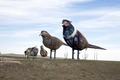 """Pheasants on the Prairie,"" Enchanted Highway, Regent, North Dakota LCCN2010630885.tif"