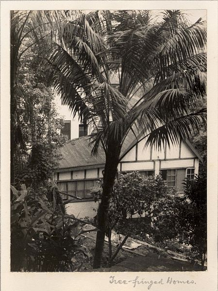 File:'Tree-fringed Homes' c.1935 (RAHS-Osborne Photograph Collection) (21505144193).jpg
