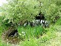 Épiais-Rhus (95), mare près de la croix d'Allon, route d'Ennery 1.jpg