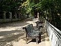 Алея в Міському парку.jpg