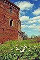 Башня замка Гросс Вонсдорф.jpg