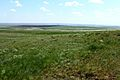 Боевая гора на горизонте - panoramio.jpg