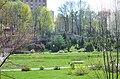Ботанічний сад ХНУ, Хмельницький.jpg