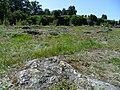Каменное поле внутри Анненских укреплений.JPG