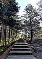 """Национальный парк """"Куршская коса"""" 20200930 103938.jpg"""