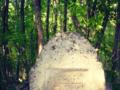 На надгробках - солярні знаки-оберіги.png