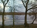 Река Березина у деревни Стасевка, Бобруйский район.jpg
