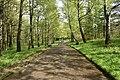 Трускавецький парк 30.jpg