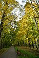 Тула, парк им. Белоусова 8.jpg