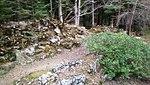 Царска Бистрица алпинеум.JPG