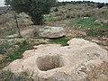 בור מים בברפיליה 2.jpg