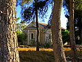 בית העם הטמפלרי מבין העצים.JPG