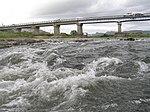 加古川万歳橋下流の瀬P9179958.jpg