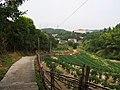 接近宦溪村 - Approaching Huanxi Village - 2014.08 - panoramio.jpg