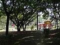 新北市樹林區潭底公園內。 - panoramio (3).jpg