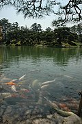 日本德島37.jpg