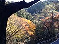 栂尾 - panoramio.jpg