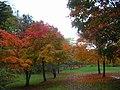 秋深し(Deep autumn) - panoramio.jpg
