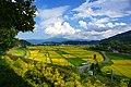 風の丘からの眺め - panoramio.jpg