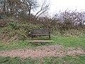 -2018-12-06 Longshot of David (Saab) McNier dedicated bench, Pigney Woods, Knapton, Norfolk.JPG