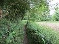 -2020-06-10 Footpath in the parish of Knapton, Norfolk (2).JPG