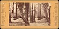 -Group of 5 Stereograph Views of Westminster Abbey, London, England- MET DP73337.jpg