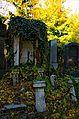 006 - Wien Zentralfriedhof 2015 (22936702830).jpg