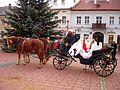 05631 Klassischer Weihnachtsmann bei der Kinderbescherung im vorkarpatischen Sanok in 2011.jpg