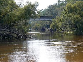 the Ochlocknee and Aucilla river basins