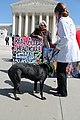 110.HealthCareReformProtests.SupremeCourt.WDC.27March2012 (8274226368).jpg