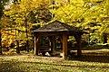 131103 Hokkaido University Botanical Gardens Sapporo Hokkaido Japan16s3.jpg