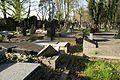 1519viki Cmentarz żydowski przy ul. Lotniczej. Foto Barbara Maliszewska.jpg