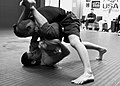 156 365 no-gi grappling (4672861418).jpg