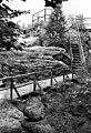 1970081822NR Rathen Basteigebiet Felsenburg Neurathen.jpg