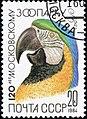 1984 CPA 5480.jpg